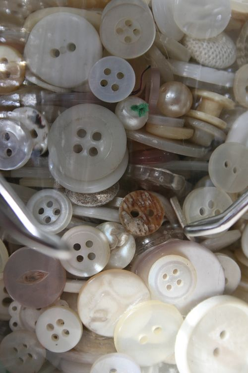 White buttons close up